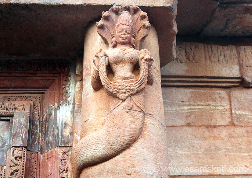 Close view of Nag Kanya. Centre is face of woman, above is snake hood and lower part is that of a snake. Lady holds a necklace in her hand. Temple building in Bhubhneswar peaked
