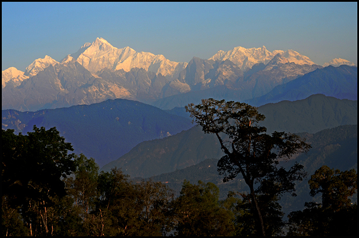 Kanchendzonga in morning.