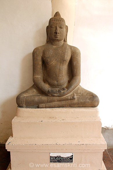Buddha 14-16th century period Vijayanagar. I missed taking pics of old coins that go back to 300 BC.