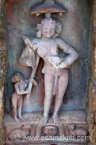 Katyayani no 7 is exactly like Katyayani no 3 whose description is - holds a katari (knife) in one hand and a skull cap on the other. A female attendant is holding an umbrella over her head. The pedestal is having a dog and jackal.