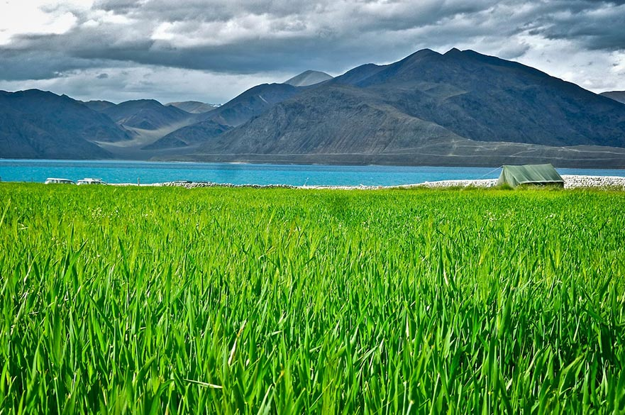 Tricolor: A tricolor of natural hues gives striking contrasts in this image. Pangong lake is embedded like a sapphire amidst the grey Karakoram mountains of Ladakh, with the occasional lush green fields of barley around its edges. A lone tent is the only indicator of habitation amidst the virgin beauty of the region, where time seems to have stood still.