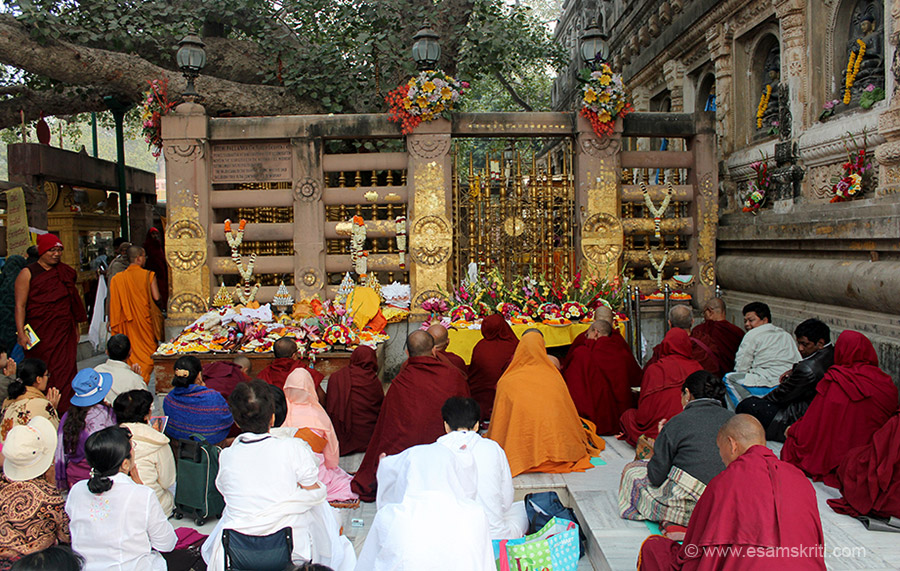 This is a continuation of part 1. The Bodhi Tree is in the centre. On either side of the railing there are devotees who pray and meditate through out the day. Saw a big Thai group who