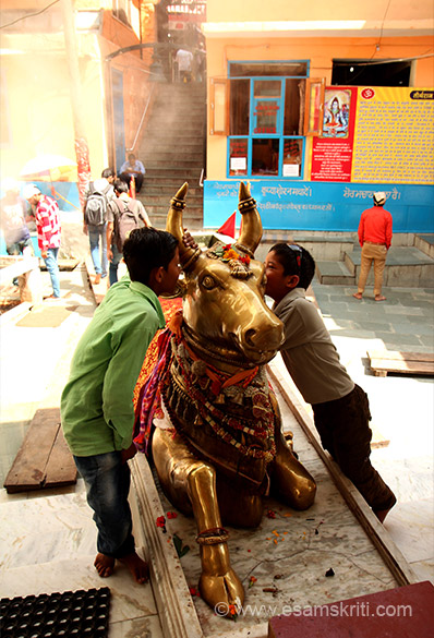 Nandi outside mandir. Every child who came for darshan said something in the ear of Nandi, smiled and then went inside.