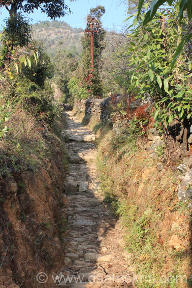 Next few pics are of the trekking path. It is adviseable to take a stick for support and a local person to show you the way. Sometimes there are two paths, a wrong path could take you