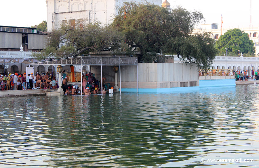 This is Dukh Bhanji Sahib. Maximum number of devotees take a dip here although some do on the right of the tree as well. In Indian tradition devotees take a bath before going to sanctum for darshan. This is