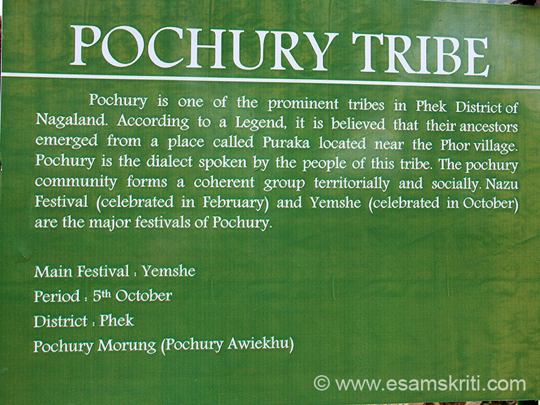 Next is POCHURY TRIBE. Main festival is Yemshe in October. Tried to be as accurate as possible with captions. In case of any errors please mail correct caption.