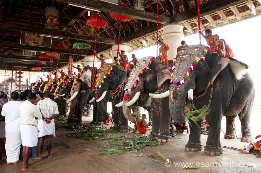 Temple festival started just after completion of Thrissurpuram. U see elephants and musicians in later pics. ``The earliest historical reference to Koodalmanikyam Temple is found in a stone inscription attributed to the Chera king Stanu Ravi Varman dated 854 A.D``.