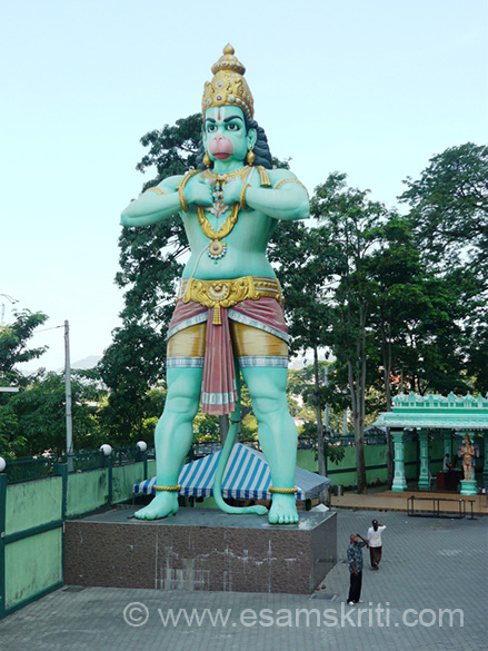"Anjaneya statue in front of Sri Rama temple. ``Once a year they celebrate the Thaipusam festival in the Batu Caves. It``s a celebration for the son of Shiva (Subramaniam) and the becoming ""one"" of  Pusan and the Brihaspati stars.``"