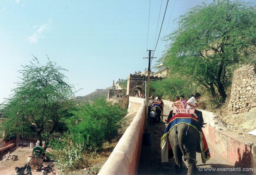 Tourists on their way up enjoying the elephant ride.