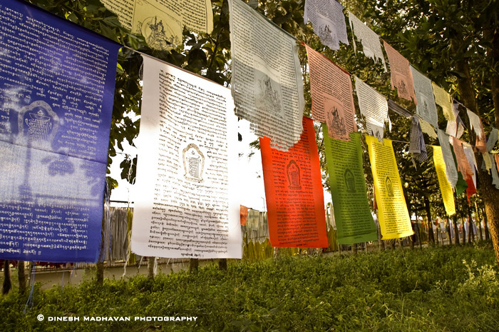 Prayers written on cloth pieces which is tied to the trees, the prayers will be taken all over the place by the wind.
