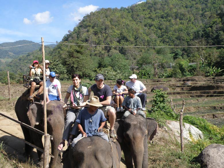 We were a group of about 12, 3 from France, 4 Thais, 4 from Europe, 1 from India, 1 from U.S. The SPV picked each one of us from the hotel. We had a guide, first went to a Butterfly farm and then drove for nearly an hour - walked for 30 minutes to an elephant farm (5-6 elephants). You see group members going for a elephant ride.