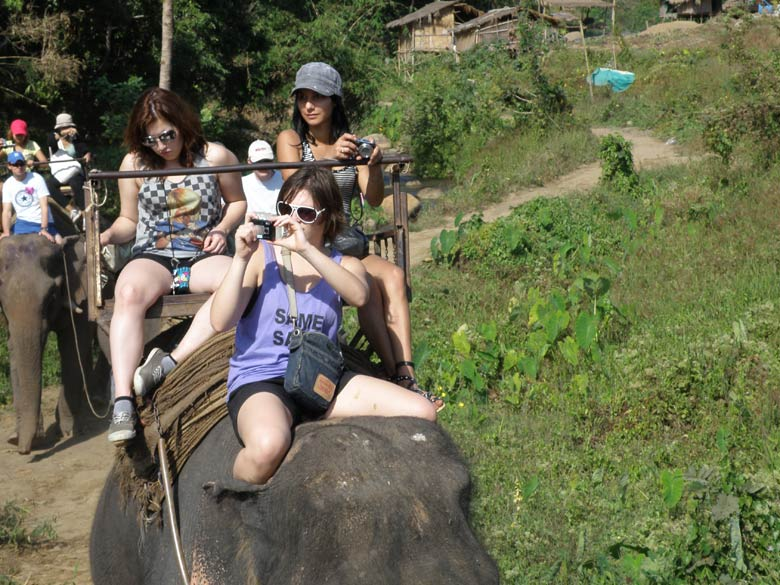 Members from France on the elephant. The walk is maximum 30 minutes and honestly quite a disappointment.
