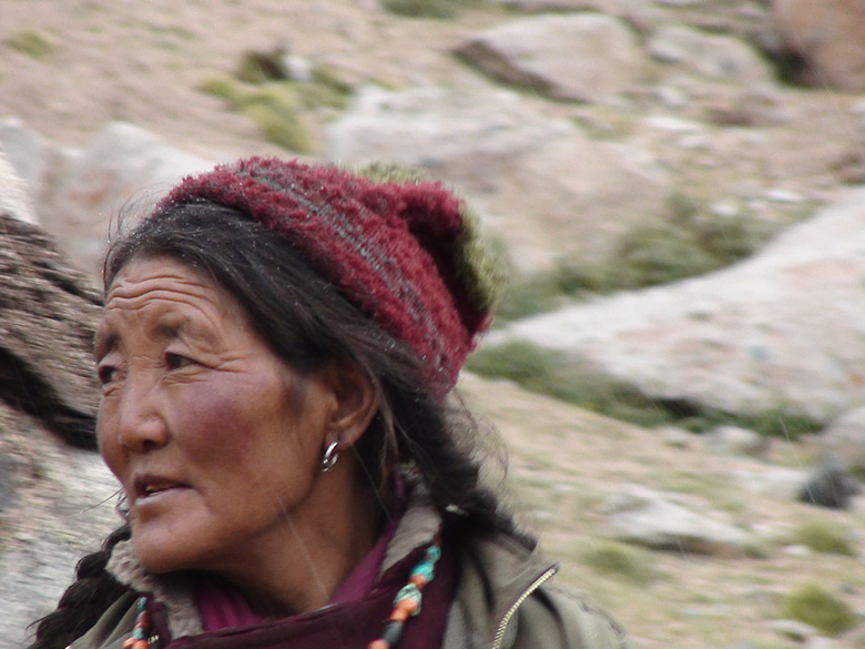 A Changpa Nomad. A very female dominated clan
