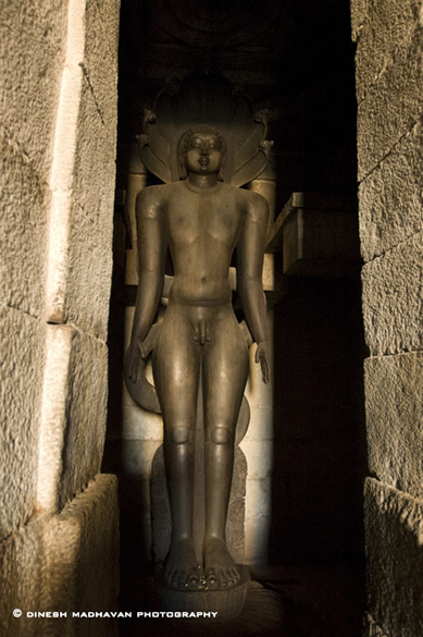 Image of Tirthankara Parshvanatha, the 23rd Jina, standing in meditation in the khadgasana - sword position.