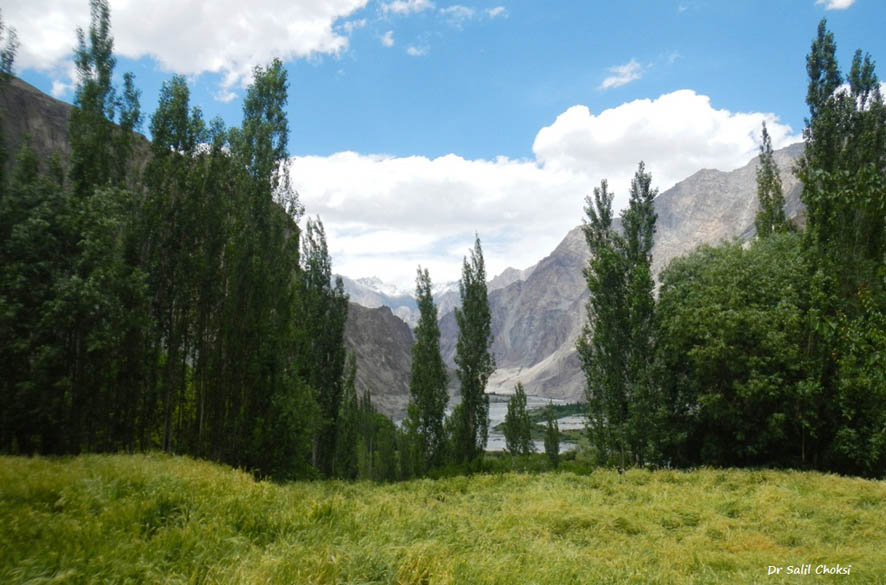 Paradise, with rugged Karakorams in the background— at Turtuk. It is a remote village inhabited by ethnic Muslims on the ``Line of Control`` between India and Pakistan. Once a part of Baltistan, it shared strong economic and cultural ties with Tibet. Turtuk and 3 other Balti villages (out of 14 in Baltistan) were captured by India in the 1971 Indo Pak war.