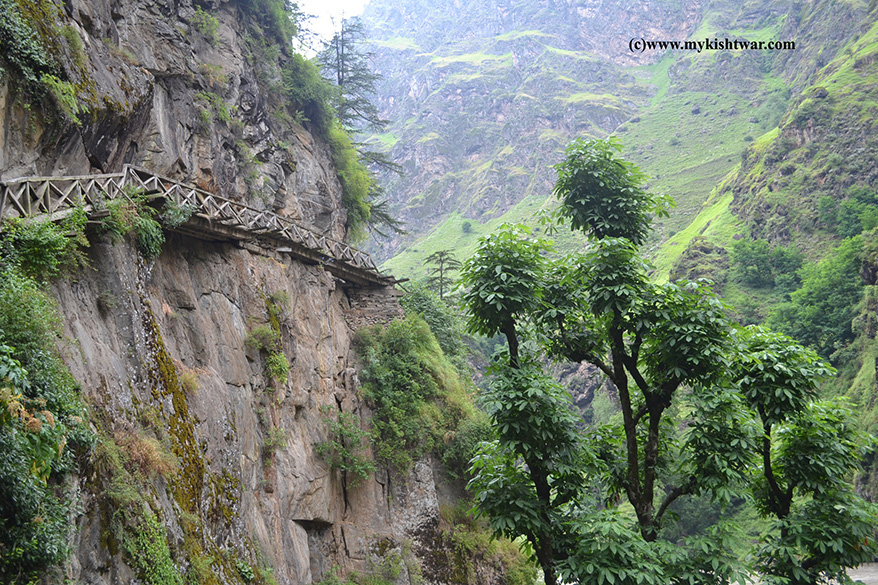 Hidden Bridge - the only one that connect Kishtwar to rest of  Dachhan valley. Kishtwar to Jammu is about a eight to nine hour drive. The route ahead was of little known places - Tangdoor, 