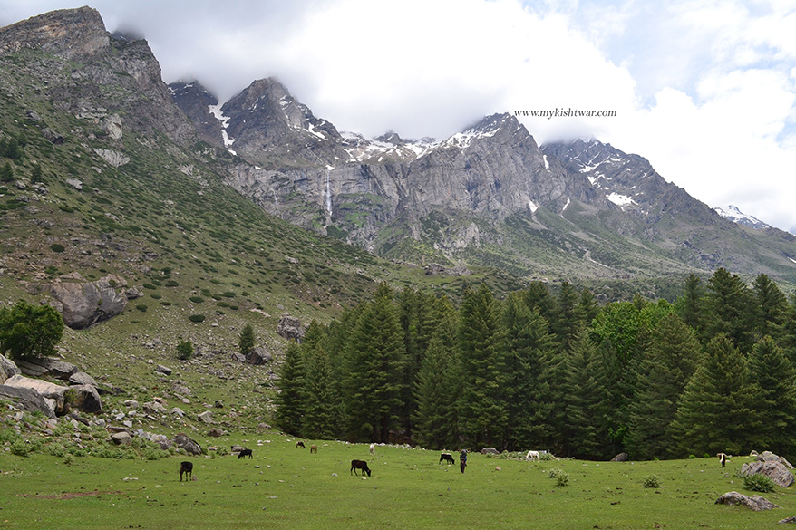 Chaterchinan is a large grazing field enroute to Brahma Sarovar.