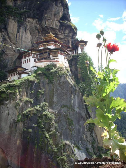 A closer view of the Tiger Knest monastery on the cliff. This is a moderate to tough trek with avg walk of 20 kms per day.