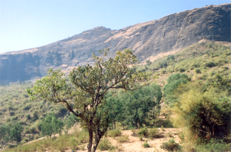 A closer view of Brahmagiri hill.