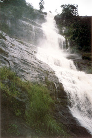 One of the many waterfalls at Munnar
