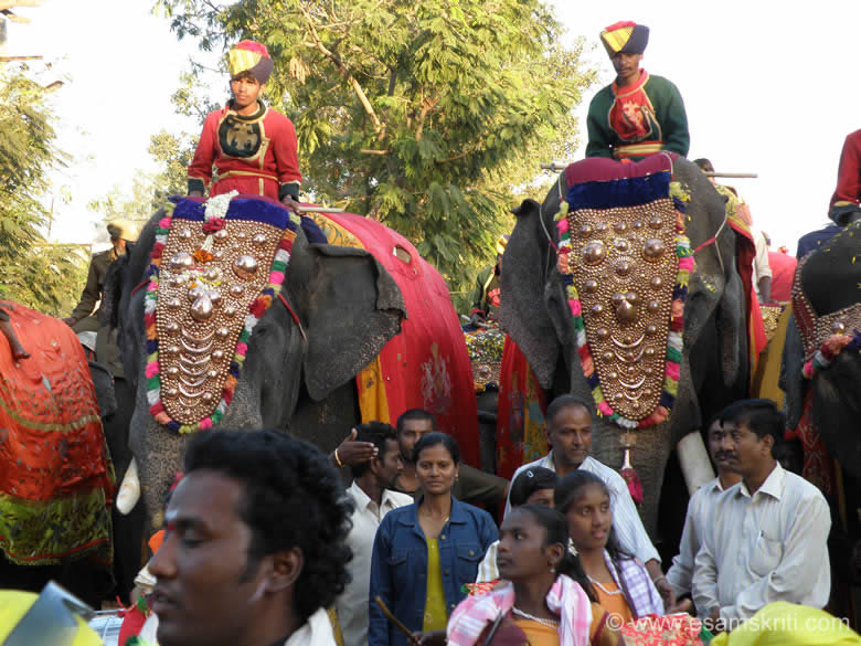 A close up of the elephants in procession, looked magnificient.
