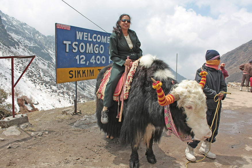 You see my wife sitting on a Yak. We paid Rs 50/ to the man for allowing us to use the Yak for this picture. The lake is at 12400 feet above sea level. A small Shiva temple is built on the lakeside. Alpine plantation grow around the lake.