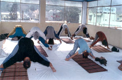 Yoga Classes in the ashram