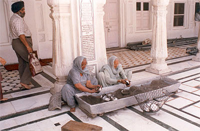 Old Women cleaning utensils, admire the spirit of Seva or service