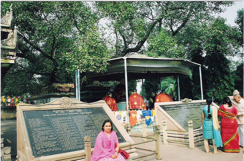 Another view of the Bodhi Tree, Lord Buddha with companions.