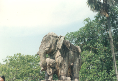 Elephant. The Chandelas who built the temple, their emblems were horses and elephants.