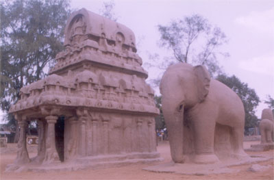 Nakula - Sahadeva Ratha - it is a two storeyed apsidal vimana. It is having the shape of back of an elephant from its base to the top. The great elephant figure close to this ratha suggests its dedication to Lord Indra. The ratha has a rectangular plan rounded at one end & correspondingly the storeyed roof is surmounted by a vault with an apsidal back. This form reproducing the design of the Buddhist chaitya halls went out of fashion.