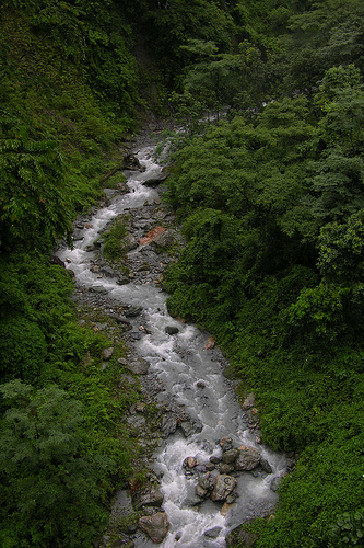Saraswati stream in the Doon Valley as seen today (stream in doon valley)