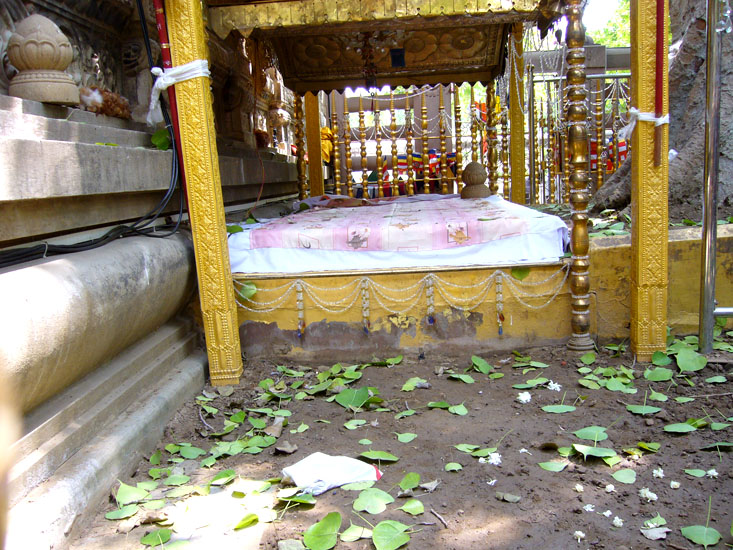 You see Vajrasana, the seat of stability, is a stone platform on which the Buddha is supposed to have sat in meditation gazing east, under the Bodhi tree.