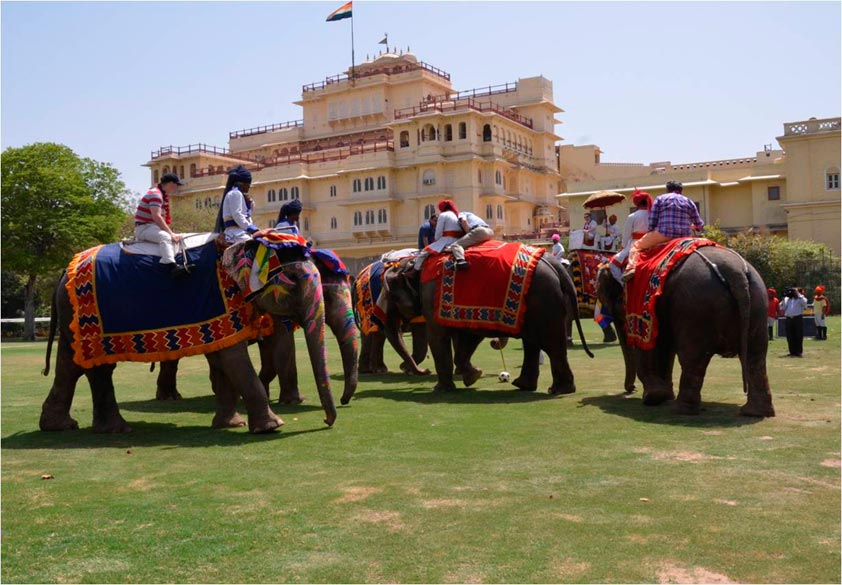 Elephant Polo Match at Jaipur.