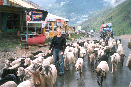 You see Emily at Rohtang Pass, a rainy wet ride to Rohtang. She decided to say Hi to fellow travelers. Just cross Rohtang and all signs of rains gone.