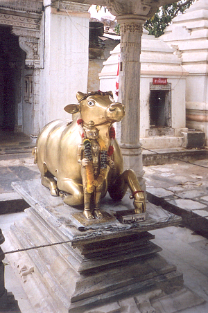 Nandi vehicle of Lord Shiva outside a Shiv temple in Mount Abu.