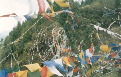 Brightly colored streamers twist in the breeze atop the verdant Hanuman Tok.
