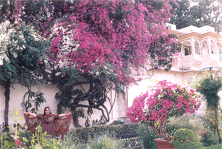 After that move on and you will see some colorful bougainvillea trees. The pictures show wife Aparna in the backdrop of one such tree.