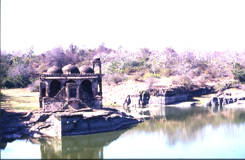 Ruins on the top of the Ranthambore Fort.