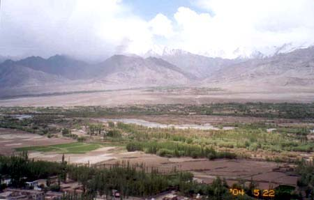 View from the Thiksey monastery, note the greenery.