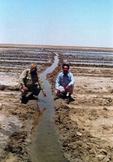 J. Gandhi in Kutch after the 2001 earthquake showing the sweet water oozing out of the soil. This water, tested by labs, was proved to be more than 5000 years old - perhaps pointing to the underground waters of the Saraswati.