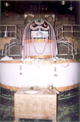 When I entered the main sanctum I was wonderstruck. In front of me is a 13 feet high big Siva linga on the pedestal. It shines beautifully in the light of oil lamps. My hands automatically folded and said Siva-Siva. The Linga is made up of one stone. King Raja Raja brought it from the river Narmada. To perform Abhisheka for this linga, there are steps on both sides.
