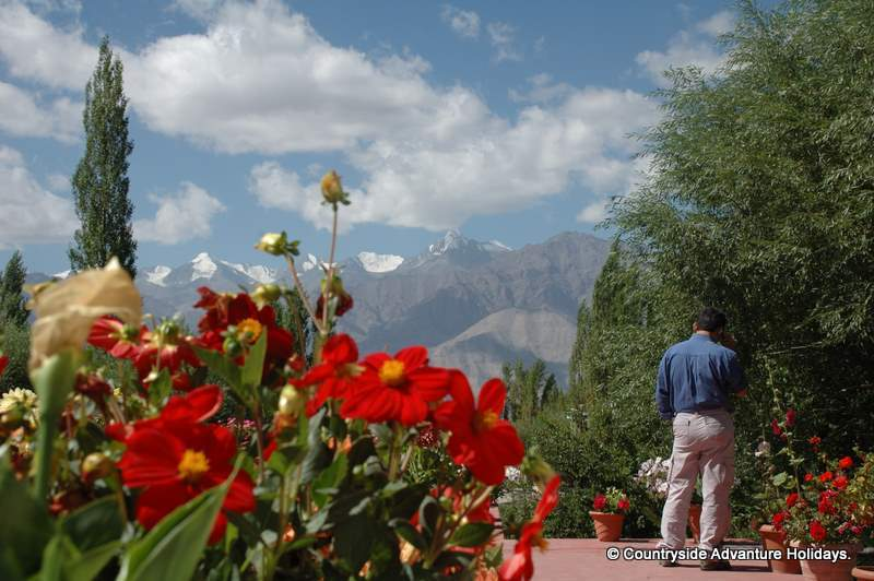 You see view from hotel, flowers with Stok Kangri peak in the background. Usual temperature during trek is from 6 degrees to Zero degrees. Drink atleast 4-5 litres of water per day to avoid dehydration.