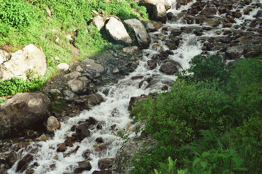 This innocuous looking stream had me in a fix for a moment. How was I to cross it? I was a man possessed when I entered the Valley. I walked as if there was no tomorrow. According to fellow traveler Jayant I might have spent close to three hours walking in the Valley.