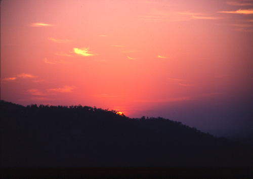 Sunset in Ranthambore