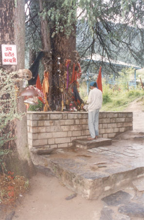 Near the Hadimba Mata Mandir is an ancient pine tree venerated as a shrine to Ghatotakach (Bhima's son in the Mahabharat). That is what you see. To the left of the picture you see a white board in Hindi that says 'Jai Ghatotkachji'.