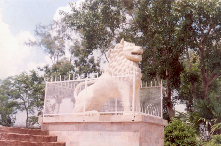 A closer view of one of the lions. The nearest airport is Patna 101 kms