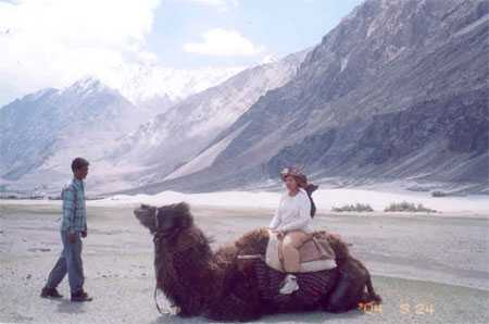 Sitting on the double humped camel.